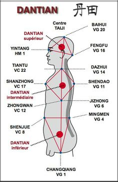 """Dantian is loosely translated as """"elixir field"""", """"sea of qi"""", or simply """"energy center"""". Dantians are important focal points for meditative and exercise techniques such as qigong, martial arts such as t'ai chi ch'uan, and in traditional Chinese medicine.  Taoist and Buddhist teachers instruct students to center the mind in the navel or lower dantian, to aid control of thoughts and emotions. Acting from the dantian is considered to be related to higher states of awareness or samadhi."""