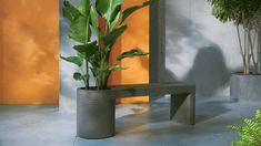 Lahan Pflanzbank, Beton in Anthrazit Planter Bench, Trough Planters, Garden Planters, Flower Power, Pots, Light And Space, Garden Spaces, Building A House, Concrete