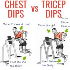 Chest Dips vs Tricep Dips: Which Exercise is Better? – Underdog Strength Trainin… – Fitness And Exercises 30 Day Workout Plan, Chest Workout At Home, Full Body Workout Routine, Best Chest Workout, Chest Workouts, Chest Exercises, Body Workouts, Dip Workout, Workout Splits