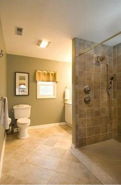 Wheelchair Accessible Bathroom Pull A Half Wall By Toilet