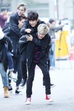 My two bias. Wonwoo, Hoshi(Soonyoung) || LIKE SEVENTEEN