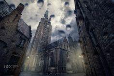 Dark Bruges by Nick Abbrey