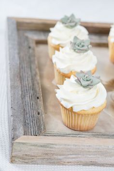 Suculentas para decorar cupcakes como temática de boda. #BodasSuculentas