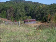 345 Oasis Road, Bulls Gap, TN 37711, USA - Country Home with Acreage - real estate listing