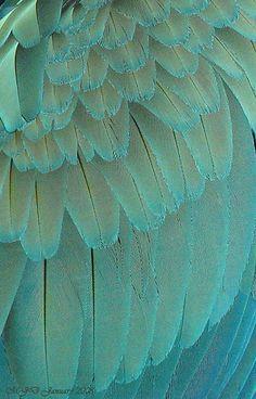 Explore Michaela Davies' photos on Flickr. Michaela Davies has uploaded 461 photos to Flickr.