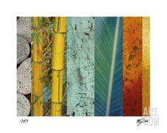 Rainforest Zen II Limited Edition by M.J. Lew at Art.com
