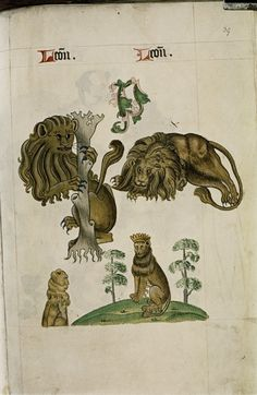 """Lions, one climbing tree trunk, others sitting, one lying down, in """"The Tudor Pattern book"""", ca. 1520/30, Ms Ashmole 1504"""