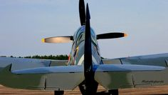 Spitfire MKIX T9