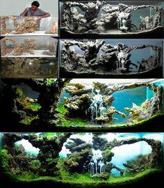 awesome aquascape