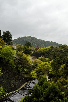 Kyoto | by Estela Sazagima
