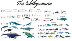 Great Reptiles of the Sea Series 3: The Ichthyosauria: Every ichthyosaur discovered to date. (18 families, 79 genera)
