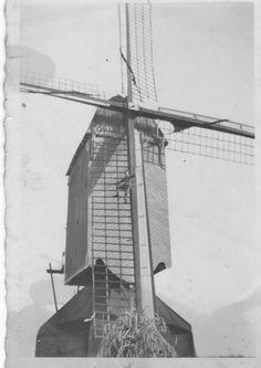 Someren molen uit 1543 Koudijs sluis 11 Schoolstraat ( eigen foto) Molen is verplaats nabij de Donck Natuurtheather heet nu De Evert Einhoutsestraat