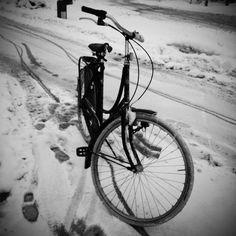 Winter Bike in Black and White