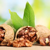 WALNUT CAN PROTECT YOU FROM DIABETES AND HEART DISEASE