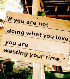 """If you are not doing what you love, you are wasting your time."""