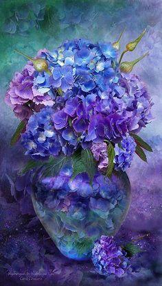 Hydrangeas-beautiful