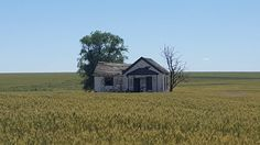 [5312x2988] Abandoned farmstead in Eastern Washington [OC] /r/AbandonedPorn