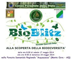 """Domani  in Abruzzo """"BioBlitz – alla Scoperta della biodiversità"""""""