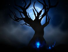 Read Will-o'-the-Wisp from the story Origin of the Fae by miladyronel (Ronel Janse van Vuuren) with 3 reads. Spirit Game, Will O The Wisp, Fantasy Setting, Halloween Art, I Am Game, Folklore, Faeries, Inktober, Brave