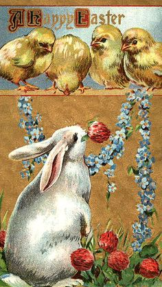 .HAVE A WONDERFUL EASTER HOLIDAY WEEKEND AND THANK YOU FOR ALL YOU DO AND CREATE BEAUTY ON EVERY BOARD.
