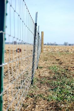 "Good instructions on how to put up a horse fence. Be sure to get WOVEN wire aka field or horse fence-it is stronger than WELDED wire )  .I would also top this fence with one ""hot"" wire across the top to electrify it.   You need wood anchor corner posts, (4x4 or 6x6) on the ends and ""in line"" every 30-50 feet mounted in concrete & at least 4 feet in ground or to the frostline.  T-posts every 10 feet."