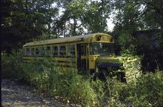 Forced To Run. Weeds surround a school bus in Times Beach, Missouri. The largest civilian exposure to the toxic chemical dioxin took place in this town in 1983. Times Beach was abandoned by residents after the contamination and remains a ghost town.    Photo: Bill Pierce/Getty Images