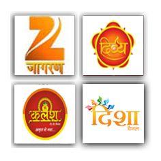 Best Astrologer In India| Top Astrologer In India| Famous Astrologer In India