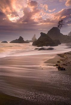 Pacific Ocean  Olympic National Park Washington State