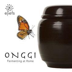 Für fortgeschrittene Korea-Kenner, die ohne Kimchie nicht mehr leben wollen. Ein wunderschöner Kimchie-Gärtopf: eliefs Onggi.