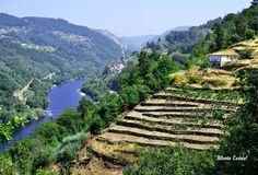 Galicia, a riveira sacra