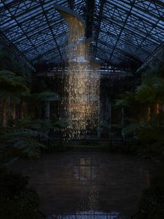 light installations by bruce munro
