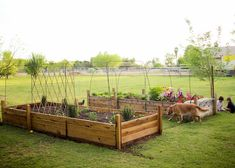 Love these raised beds.