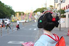 A blog written by Kikuhina, a maiko in Gifu, near Nagoya