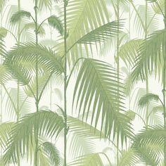Cole & Sons' Palm Jungle