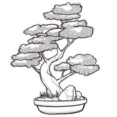 25 trendy bonsai tree tattoo meaning Tree Sketches, Drawing Sketches, Art Drawings, Drawing Art, Tree Tattoo Meaning, Tattoo Tree, Deer Tattoo, Raven Tattoo, Tattoo Ink