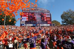 Being a Clemson Tiger fan is awesome! Clemson Football, Clemson Tigers, College Football, Future School, I School, Saturday Night Football, Tiger Images, Picture Places, University Of South Carolina