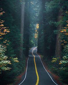 Beautiful Roads, Beautiful Landscapes, Beautiful Places, Beautiful Sunset, Wonderful Places, Image Nature, Nature Photos, Best Travel Insurance, Nature Landscape