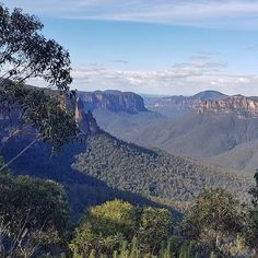 Last weekend I ran my first ever Meet Up leading an amazing group of people from Evan's Lookout in the #BlueMountains to Arcacia Flats campground where we spent the night (it's somewhere in the gully of this photo). The next day we made the steep slog up to Govetts Leap before returning to Evan's on the Clifftop Track. I was so nervous to run an event but it was so much fun to share my passion with others.  And what better place to do it? Seriously this place astounds me every time.  #NSW…