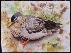 "ARTIST: Judy Heimlich TITLE: ""Pismo Duck"" PRICE: $595 DESCRIPTION: Framed, watercolor and inks"
