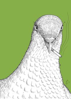 Pigeon Print Bitter Birds funny bird from by DiagonalComics