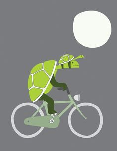 Biking turtle