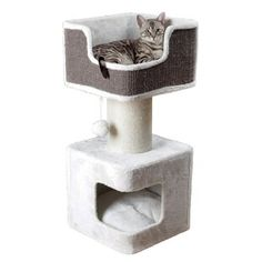 online shopping for 34 Glenna Cat Tree Archie & Oscar from top store. See new offer for 34 Glenna Cat Tree Archie & Oscar