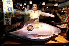 Kiyoshi Kimura  pays 74 million yen ($637,000) for a 212 kilogram Pacific bluefin tuna.
