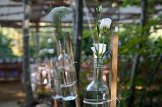Flowers in recycled bottles & jars decorate the pergola at Wilderness Wood wedding Recycled Bottles, Recycled Glass, Bottles And Jars, Glass Bottles, Wedding In The Woods, Our Wedding, Wilderness, Markers, Wedding Flowers