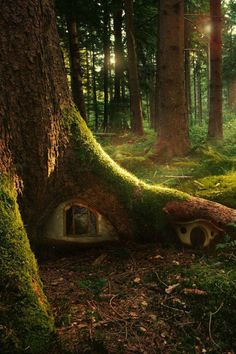 Can you imagine a little kid coming across this? KLF Tree House, The Enchanted Wood photo via ilaurens Enchanted Wood, Enchanted Garden, The Enchanted Forest, Fairy Garden Houses, Fairy Gardens, Fairy Tree Houses, Garden Homes, Tree Garden, Fruit Garden