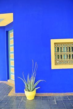 My Attic: Marrakech Day 1, Jardin Majorelle