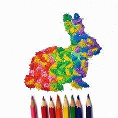 Pencil Shaving Art by Meghan Maconochie. l #bunny