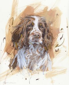 Springer Spaniel...I love the rough, painterly effects in all these dog paintings. It looks as if they began as watercolors but were finished off with chalks or pastels.