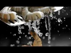 ▶ Japanense Cuisine - M&S Food TV Ad - YouTube