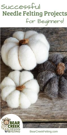Successful Needle Felting projects for beginners. The perfect DIY ideas to help you get started. #felting